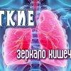 Респираторные заболевания зависят от микрофлоры кишечника. Грибок в верхних дыхательных путях: причины поражения, симптомы, лечение