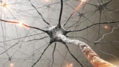 Google-дың нейрожелісі адамның жүрек ауруларын анықтайды