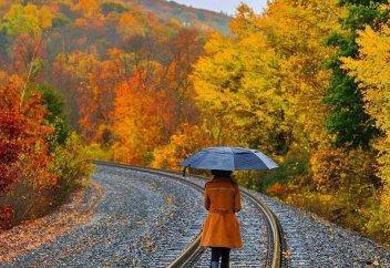 17 снимков казахстанских фотографов, взглянув на которые, вы полюбите осень (фото)