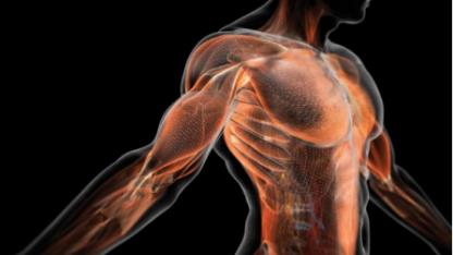 9 поразительных способностей, которыми обладает тело человека