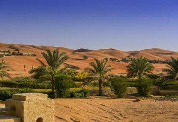 Разные: Миллионные штрафы за нанесение вреда природе введут в ОАЭ