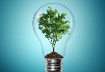 Инвесторы делают ставку на возобновляемые источники энергии