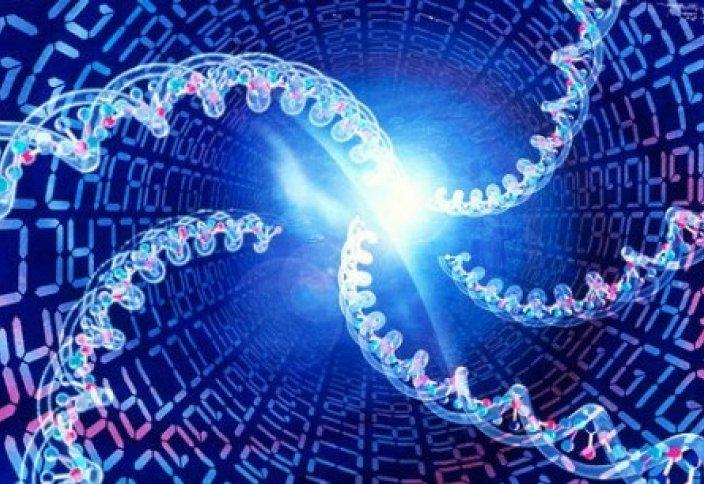 В Казахстане проведут генетические исследования