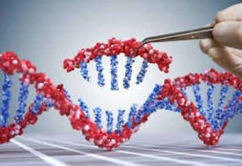 «Генетикалық қайшыны» тұмауға қарсы пайдаланып көрмек