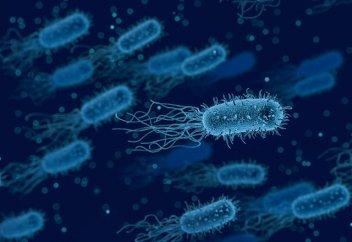 Антибиотикке төзімді бактерияны жоюдың тағы бір тың тәсілі табылды