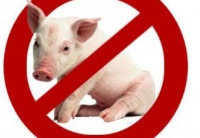 Вред свинины на здоровья человека!