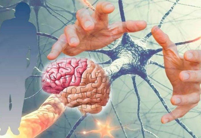 Альцгеймер, Паркинсон ауруларын тоқтатын тәсіл табылды
