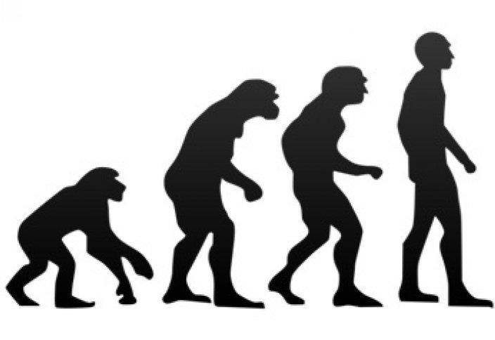 Дети Адама против детей обезьян – новые дебаты о происхождении человека