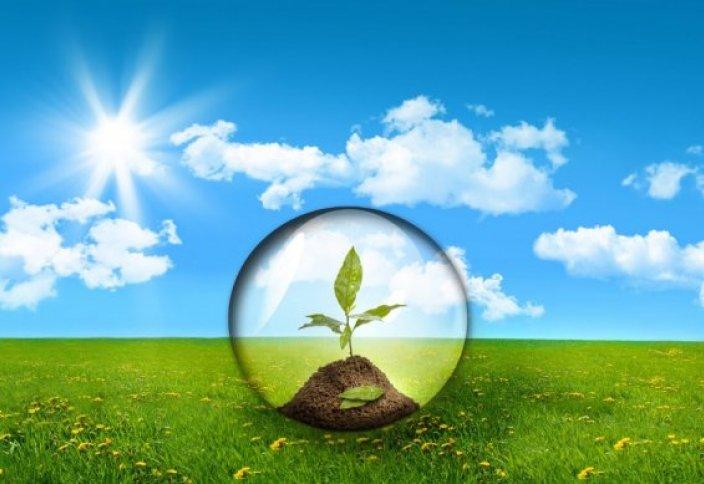 15-16 қараша Астанада «Eco-day» акциясы өтеді