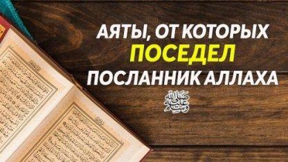 Аяты, от которых поседел Посланник Аллаха | Ислам Sound