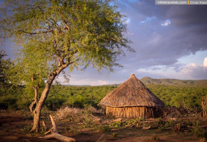 Эфиопия планирует возродить 22 млн гектаров безжизненной земли к 2030 году