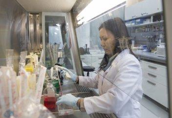 Саумал с кишечными бактериями соединили ученые НУ