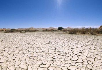 Жаһандық жылынудан жердің қай бөлігі тіршілікке жарамсыз күйге түседі? (видео)