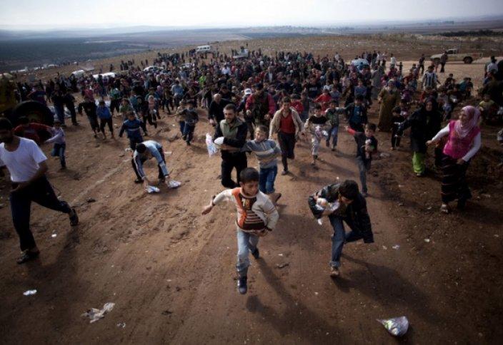 Сирия босқындарына арнайы университет ашылатын болды