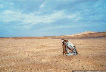 Азиядағы орны толмайтын экологиялық апат