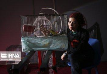 Иранская девушка-Детейлер (фото)