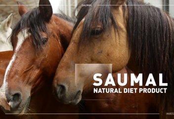 Метабиотик на основе саумала разработали казахстанские учёные
