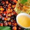 Вредно ли пальмовое масло: результаты исследований удивят вас