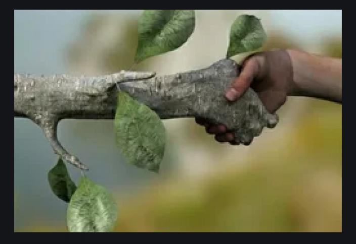 Разные: Природа самостоятельно очищает Землю от 41,7 млн тонн человеческих отходов в год