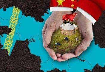 Қазақстанда 400 мың этникалық қытай өмір сүріп жатыр