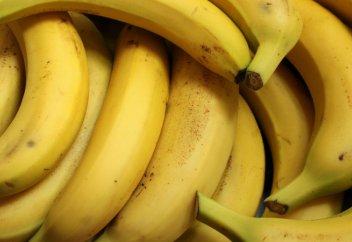 Бананы научились растить в Туркестанской области (видео)