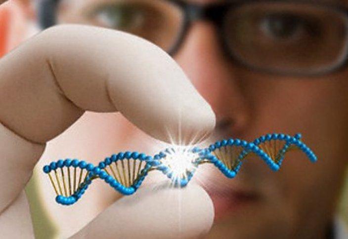 ДНК-ны бөгде генді енгізбей редакциялайтын тәсіл табылды