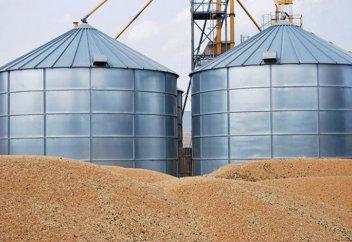 Выгода на $70 млн: почему Казахстан должен экспортировать муку, а не зерно