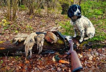 Сроки охоты на животных и водоплавающую дичь изменят в Казахстане