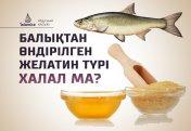 Балықтан өндірілген желатин түрі халал ма?