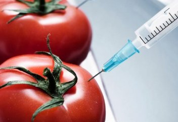 Қазақстанда ГМО-ны қолдануға заңмен тыйым салынды