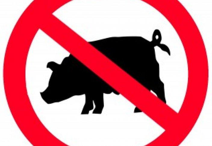 Почему мясо свинины является харамом (запретным)?