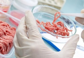 Искусственное мясо: возможно, самое перспективное IPO 2019 года