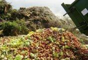 Бір жыл ішінде Еуропаның бір елі 1 жарым млн келіге тарта тағамды қоқысқа тастаған