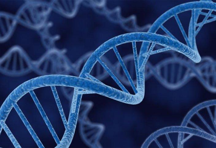 Google генетикалық зерттеу негізінде диагноз қоюдың өзгеше үлгісін ұсынбақшы