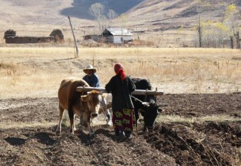 Жан басына шаққанда су тапшылығына қатты ұшыраған Орта Азия елі