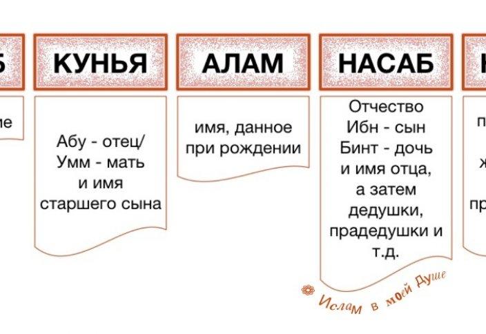 Одноклассники социальная сеть - Профи в доме