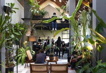 В Индонезии проектируют тропические офисы (фото)