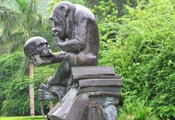 Обезьяны - не наши предки