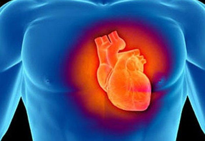 Можно ли пересадить клапаны сердца свиньи человеку?