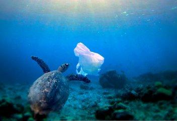Ученые: нынешние устройства очистки пластика не решат проблему загрязнения. К 2040 году в окружающей среде будет находиться 1,3 миллиарда тонн пластика