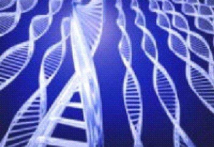 Генетика человека и Ислам: научные и медицинские аспекты. Часть 2/6. Естественный отбор.