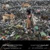 Принц ОАЭ наградил лучших фотографов мира
