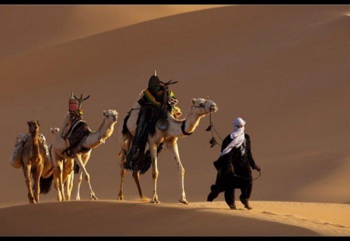Выживание в пустыне, кочевники Сахары. Мавритания, Африка