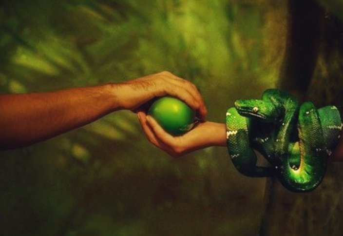 Правда ли, что Ева стала причиной изгнания Адама из Рая?