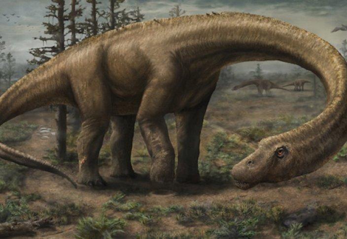 Ең алып динозаврдың сүйегі табылды