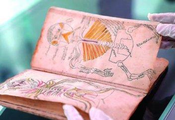 Леонардо да Винчидің анатомиясынан бұрын хатқа түскен ислами медициналық кітап табылды