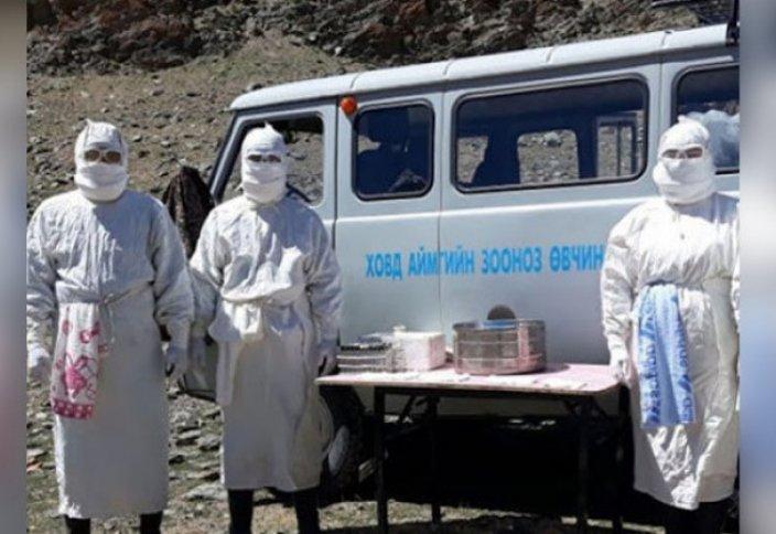 Из-за бубонной чумы в Монголии введен карантин