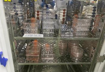 Разные: Житель Китая создал лабораторию, где синтезирует лекарство для смертельно больного сына
