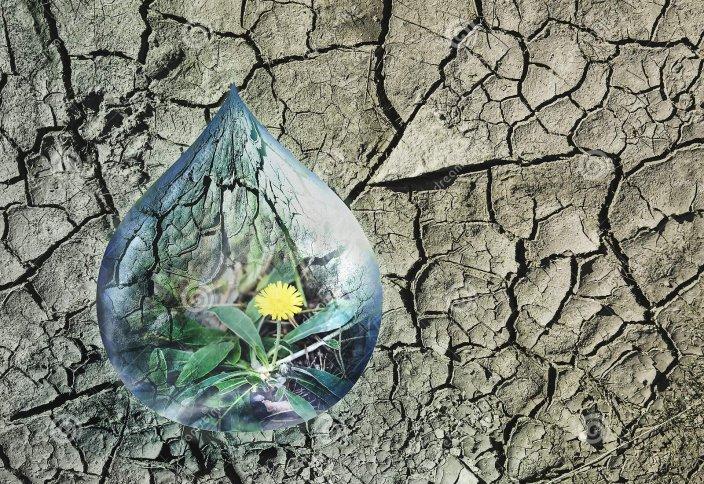 Сегіз жылдан соң әлемдегі су тапшылығы 40%-ға жетеді