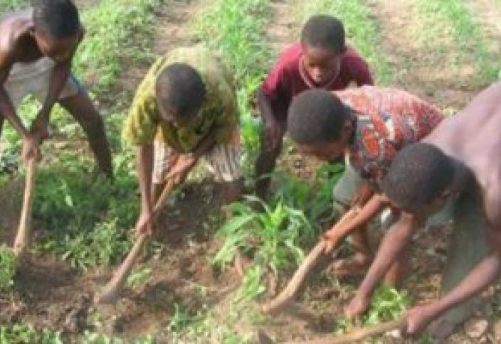 Мавританские дети страдают из-за нехватки знаний
